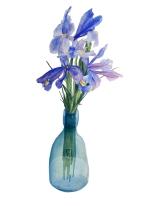 Irises watercolour