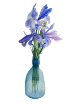 Irises watercolour