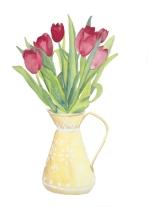 Tulips watercolour